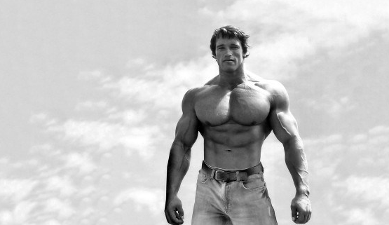 arnold body press shoulders