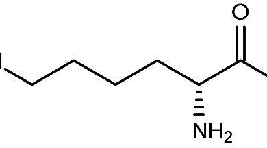 image for lysine formula