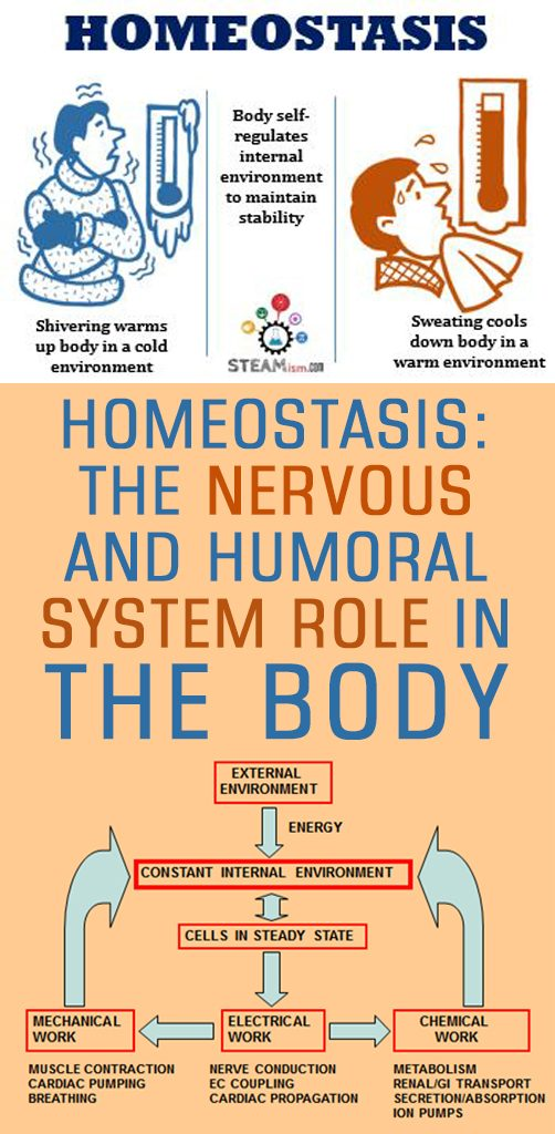 Homeostasis means the persistence of all the basic parameters of the body.