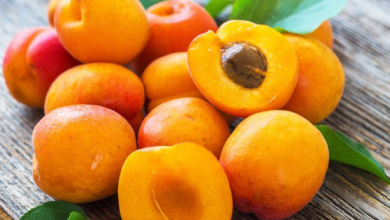 Photo of Consume Apricots for Better Vision, Heart Diseases and Avoid Cataract surgery