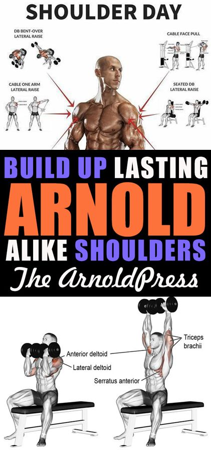 In working out to increase in body size, Arnold Schwarzenegger is definitely the best example. The Right Way To Build Up Lasting Arnold - Alike Shoulders
