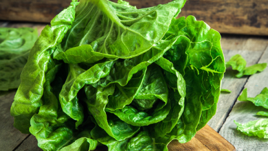 Photo of Lettuce: A Plethora of Nutritional Wealth, Aiding Your Body's Health